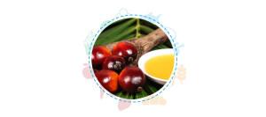 sicurezza-alimentare-olio-palma