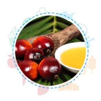 sicurezza alimentare olio palma
